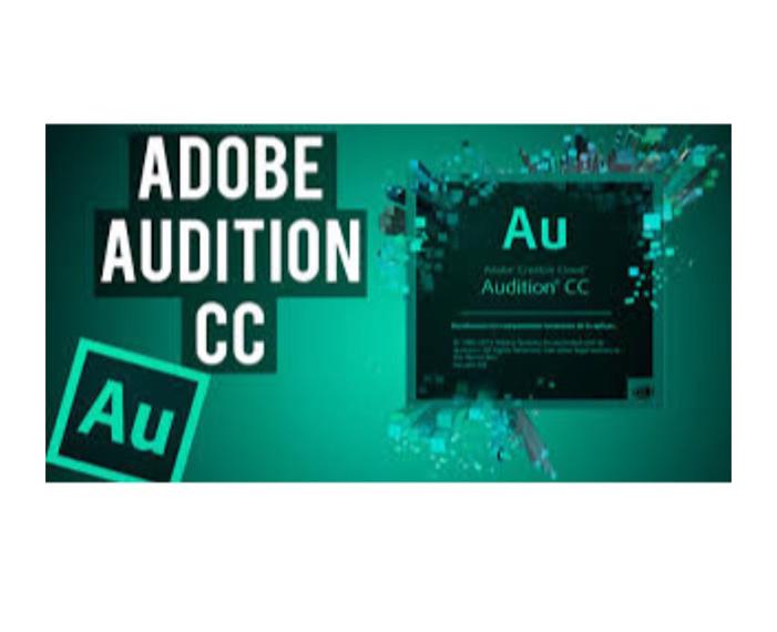 14 178 41, תוכנת adobe, תוכנת Adobe LightRoom, תוכנת adobe indesign, תוכנת adobe creative cloud, תוכנת Adobe audition